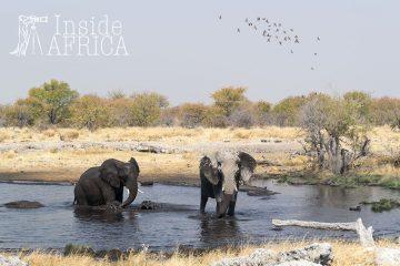 Namibia für Preisbewusste