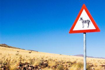 Camping-Abenteuer in Namibia